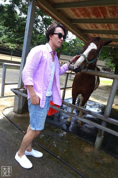 新手騎馬經驗談