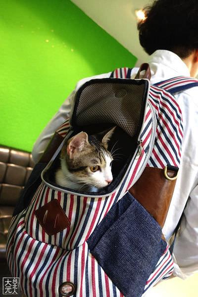 寵物外出時尚背包