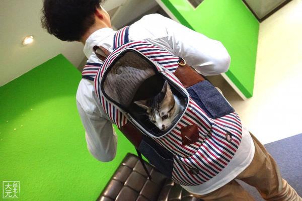 貓狗外出專用的時尚背包