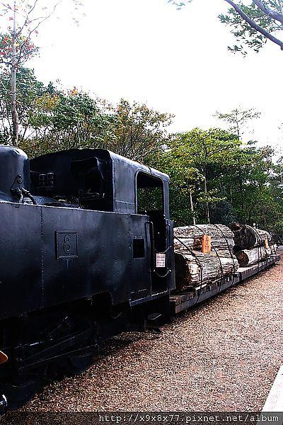 P1225296